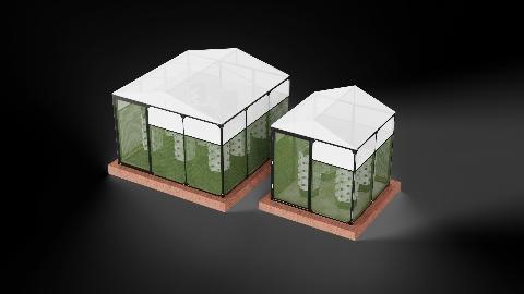 3x3 (9m2) & 2x2 (4m2) Tunnel Greenhouse