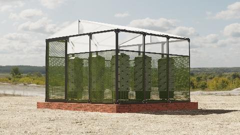 3x3 Tunnel Greenhouse - 9m2